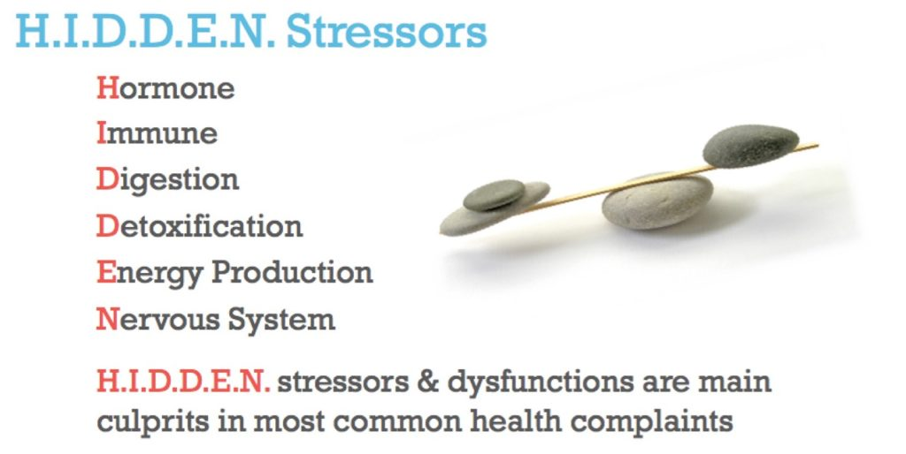 HIDDEN STRESS according to Functional Diagnostic Nutrition®